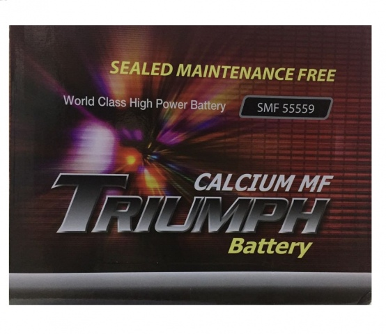 TRIUMPH BATTERIES